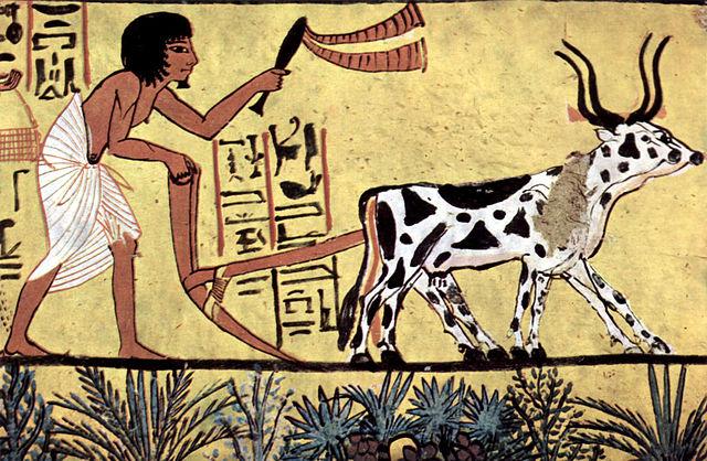 Aratura antico Egitto